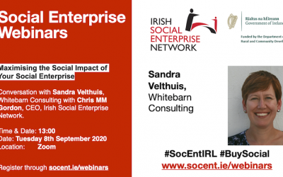 Maximising the social impact of your social enterprise – Webinar 8th September 2020 at 13:00