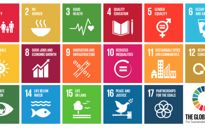 DECC Public Consultation – re SDG National Implementation Plan