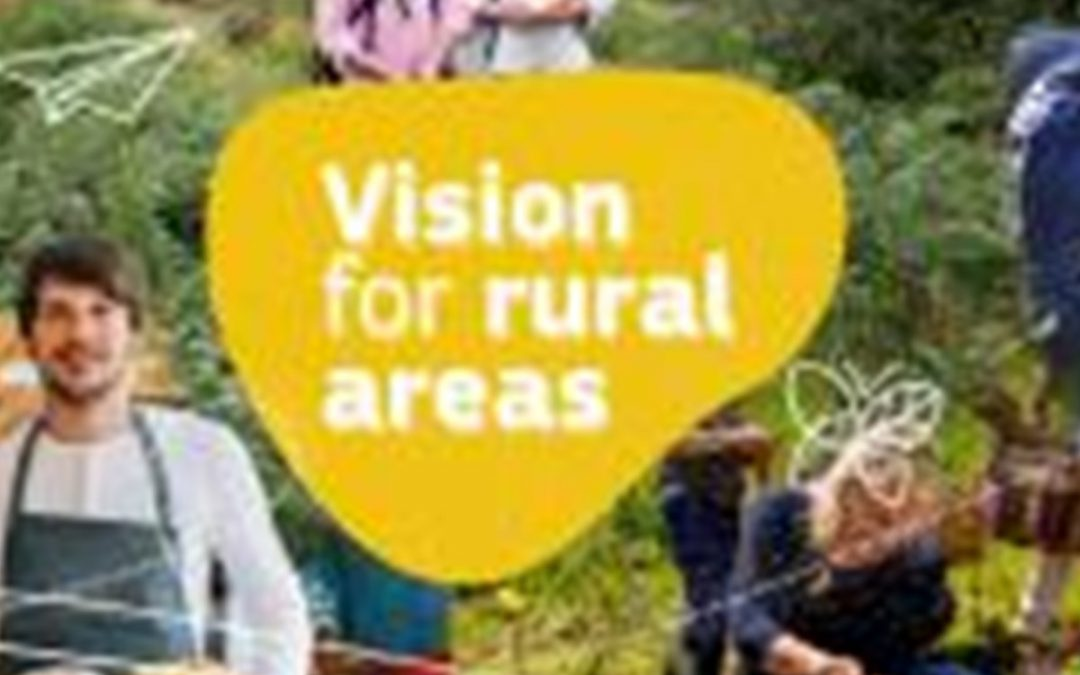 A long-term vision for Rural areas that includes the Social Economy! ENSIE