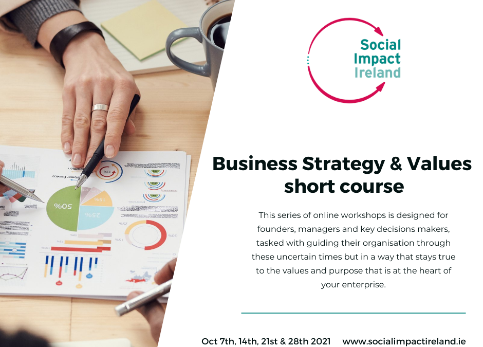Social Impact Ireland: Our next short course is now open for registration!